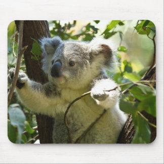 Koala-Süsse Mauspads