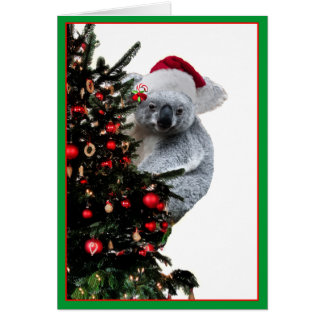 Koala-Weihnachten Karte
