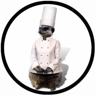 Koch Meerkat Photo Figuren