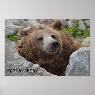 Kodiak-Bär Poster