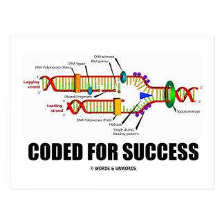 Kodiert für Erfolg DNS-Reproduktion Postkarten