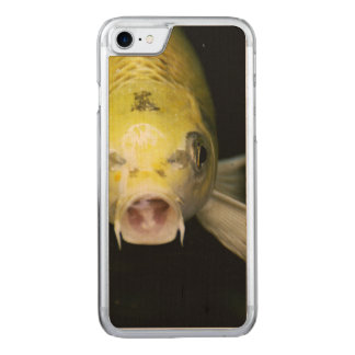 Koi Fische in Japan Carved iPhone 8/7 Hülle