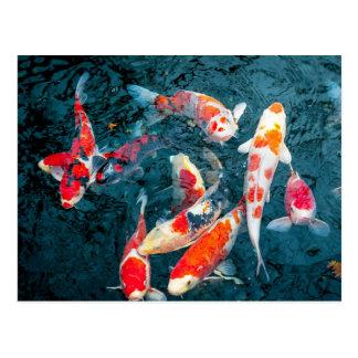 Koi im Teich von Sensō-ji Postkarte