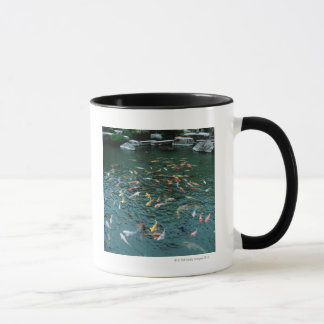 Koi in einem Teich Tasse