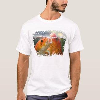 Koi Karpfen T-Shirt