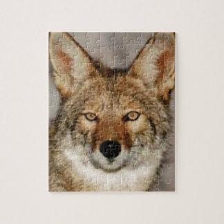 Kojote herauf nahes puzzle