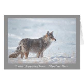 Kojote im Schnee Karte