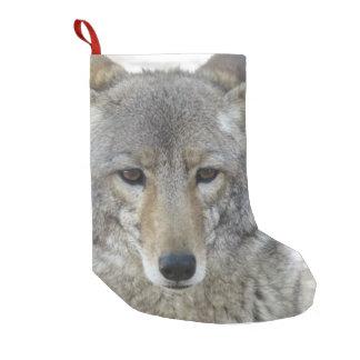 Kojote - kleiner weihnachtsstrumpf