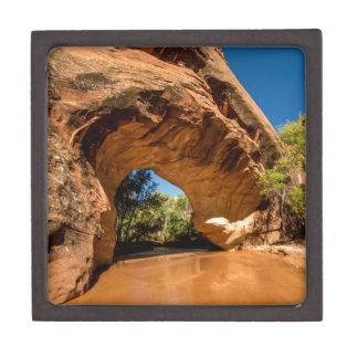 Kojote-natürliche Brücke - KojoteGulch - Utah Schmuckkiste