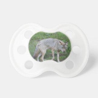 Kojote-Sammlung Schnuller