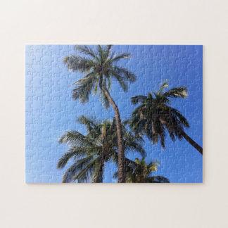 Kokosnuss-Bäume in Kihei, Maui, Hawaii Puzzle