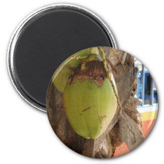 Kokosnuss-Träume Runder Magnet 5,7 Cm