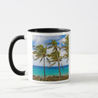 KokosnussPalmen (Cocos nucifera) herein Tasse