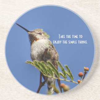 Kolibri auf Niederlassung durch SnapDaddy Sandstein Untersetzer