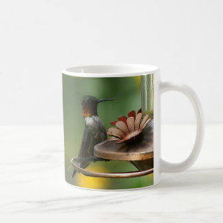 Kolibri, Becher Kaffeetasse