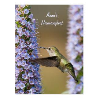 Kolibri-Blumen-Gewohnheits-Postkarte Postkarte