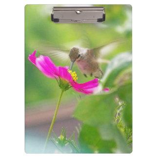 Kolibri-Blumen-Vogel-Tier-Tiere mit Blumen Klemmbrett