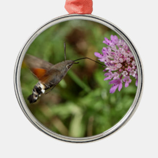 Kolibri Falkemotte (Macroglossum stellatarum) Silbernes Ornament