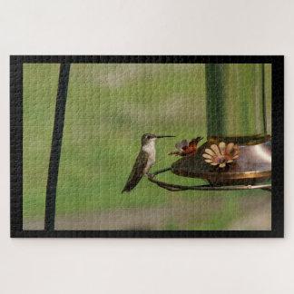 Kolibri, Foto-Puzzlespiel Puzzle