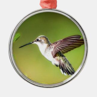 Kolibri im Flug Silbernes Ornament
