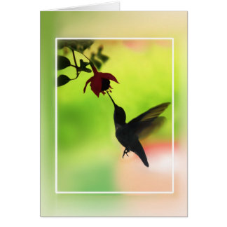 Kolibri in der Silhouette Karte