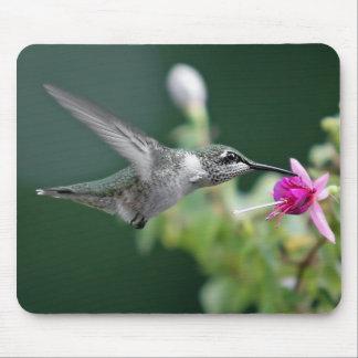Kolibri Mousepad