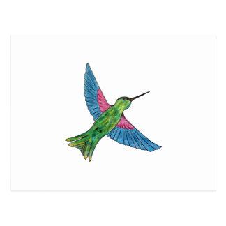 Kolibri Postkarte