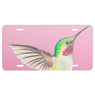 Kolibri-rosa Buntglas US Nummernschild