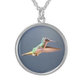 Kolibri-runde Halsketten-Sterlingsilber Sterling Silberkette