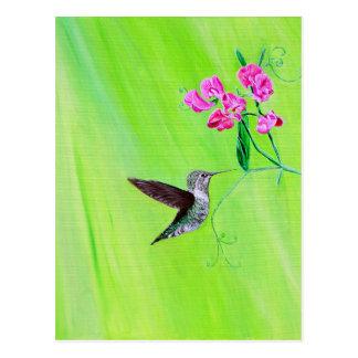 Kolibri u. süße Erbsen Postkarte