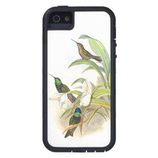 Kolibri-Vogel-Blumen-Blumentier-Tiere Hülle Fürs iPhone 5