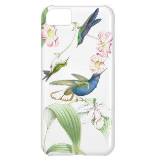 Kolibri-Vogel-Blumen-Blumentier-Tiere iPhone 5C Hülle