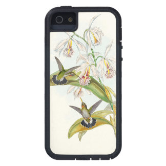 Kolibri-Vogel-Blumen-Blumentier-Tiere Schutzhülle Fürs iPhone 5
