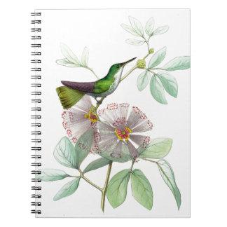 Kolibri-Vogel-Blumen-Blumentier-Tiere Spiral Notizblock