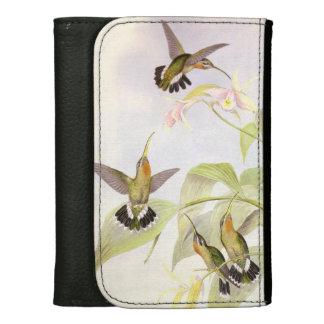 Kolibri-Vogel-Blumen-Blumentier-wild lebende Tiere