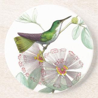 Kolibri-Vogel-Blumen-Blumentier-wild lebende Tiere Sandstein Untersetzer