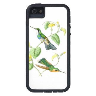 Kolibri-Vogel-Tier-Tier-Blumen mit Blumen Hülle Fürs iPhone 5