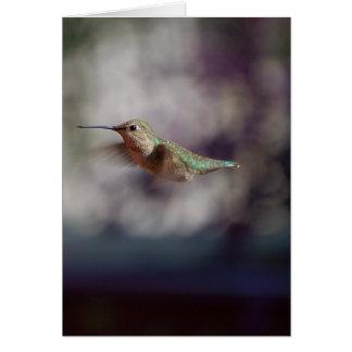 Kolibri während des Betriebs Grußkarte