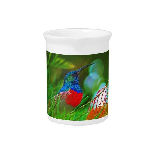 Kolibrirubin throated getränke krüge
