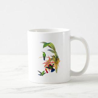 Kolibris Johns Goulds mit rosa Orchideen Kaffeetasse