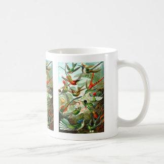 Kolibris Kaffeetasse