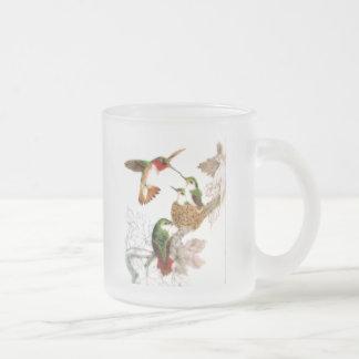 Kolibris Mattglastasse