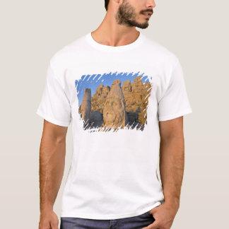 Kolossale Hauptstatuen der Götter schützend T-Shirt