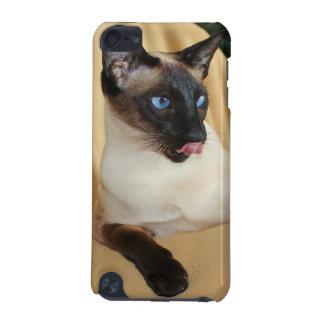 Komischer die Siegel-Punkt-siamesische Katze, die iPod Touch 5G Hülle