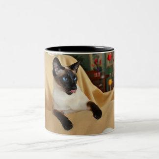 Komischer die Siegel-Punkt-siamesische Katze, die Zweifarbige Tasse