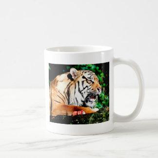 Kommen Sie nicht nahe Kaffeetasse