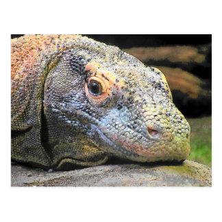 Komodo Drache-nahes hohes Profil Postkarte