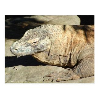 Komodo Drache-Postkarte Postkarte