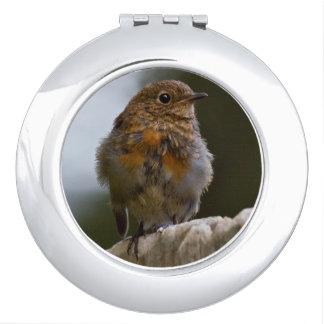 Kompakter Spiegel Baby-Robins Schminkspiegel