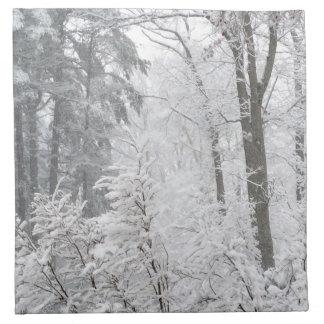 Konfektionsartikel im Schnee --- Serviette